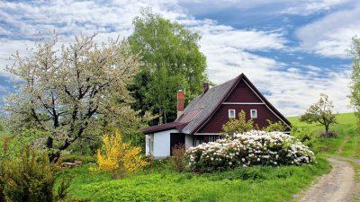 Entretien de jardin : quelques astuces pour réussir